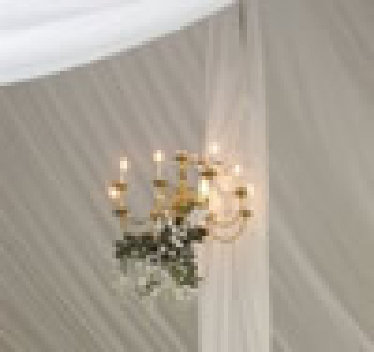 CHANDELIER LIGHT 8 BRH BRASS