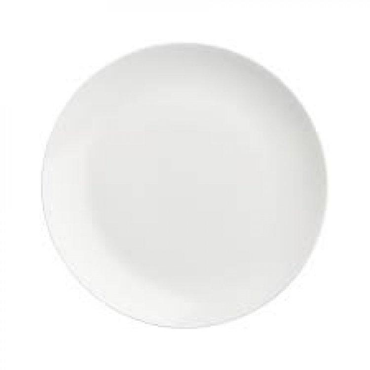 DINNER PLATE 10.5